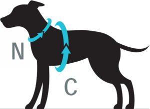 Mesh Vest hondentuig maat Hondenpenning.net HETDIER.nl AnimalWebshop