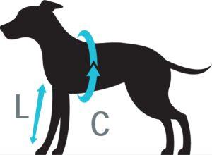 Petlando Voorpootbeschermer voor honden maat Hondenpenning.net HETDIER.nl AnimalWebshop